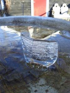 Ice in birdbath