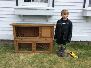 Milo helped me make their bed and move the piggies outside